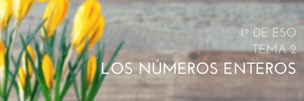 T02 – Números enteros y sus propiedades