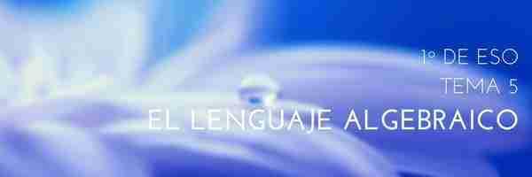 T05 – El lenguaje algebraico.