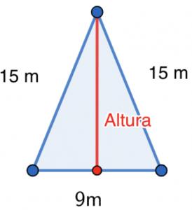 M Savia Tema 13 - Ejercicio 63 - Teorema de Pitágoras
