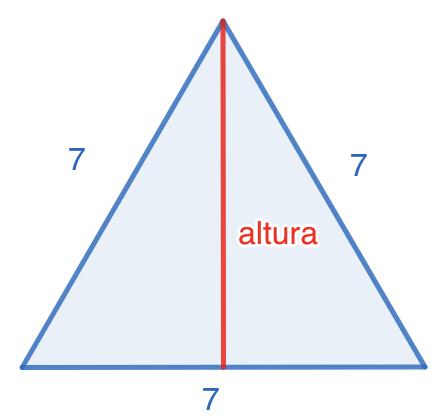 SM Savia Tema 13 - Ejercicio 64 - Teorema de Pitágoras